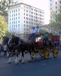 A classic horse cart